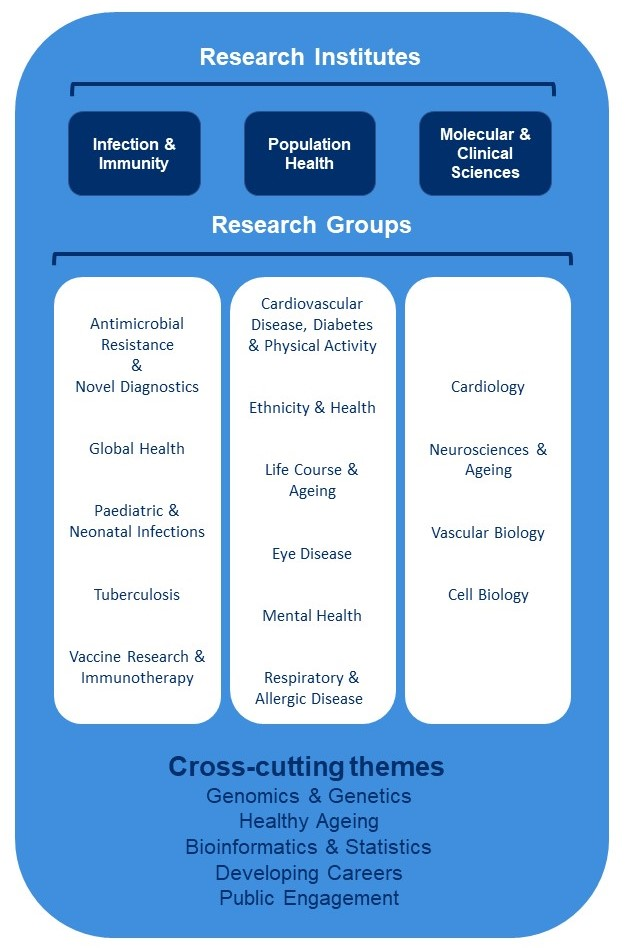 A diagram of research institutes and their research groups.